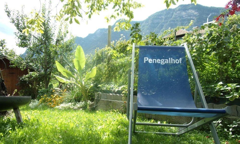 Vacanze in agriturismo a Caldaro – Puro rilassamento al maso Penegalhof a Bolzano Vigneti e Dolomiti