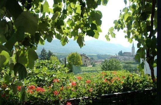 Vacanze al maso vinicolo e frutticolo